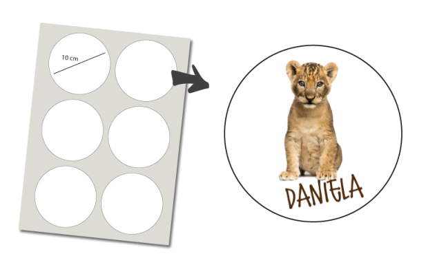Stickers Round 6 items: Little Lion