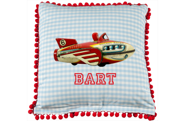 Cushion cover: Antique Fly Machine