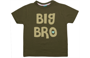 Boys t-shirt: Big Bro