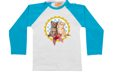 Raglan t-shirt: Two kittens