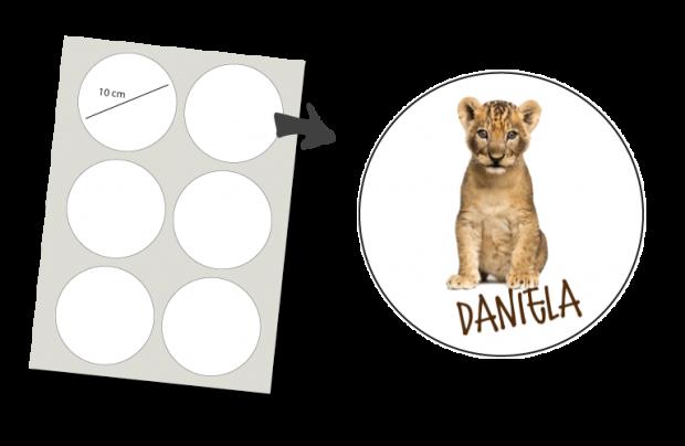 Stickers Rond 6 stuks: Leeuwtje