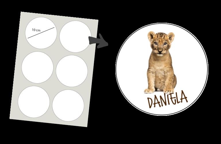 Sorprentas, Stickers Rond 6 stuks: Leeuwtje